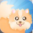 Pom Rush App Icon
